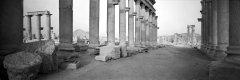 05-Syrien-Palmyra-.jpg